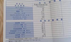 献血でわかる血液検査の結果
