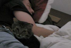 寝ている男性と猫