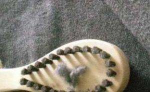 毛玉取りブラシのホコリ