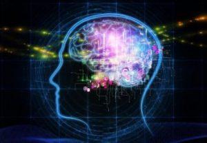 脳内のイメージ
