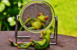 自分を見つめる蛙